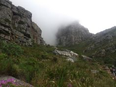 a place to explore. Table Mountain, Tourist Places, Cape Town, South Africa, Explore, Mountains, Travel, Voyage, Viajes