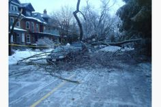 Star readers across the GTA sent photos of dedicated hydro workers, trees encased in ice and more. Ice Storm, Toronto Star, Outdoor, Image, Outdoors, Outdoor Games, Outdoor Life