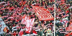 Köln schießt sich zurück in die Bundesliga - Die Tore von Marcel Risse, Patrick Helmes und Anthony Ujah machten in der zweiten Halbzeit alles klar: Mit dem 3:1-Sieg gegen den VfL Bochum sicherte sich der 1. FC Köln nicht nur vorzeitig den Meistertitel in der Zweiten Bundesliga. Auch der Aufstieg in die Bundesliga ist dem Club jetzt nicht mehr zu nehmen.