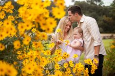 Pinned onto Family Photography - Editor's ChoiceBoard in Family Category Sunflower Feild, Sunflower Field Pictures, Sunflower Pics, Prom Photography, Holiday Photography, Family Posing, Family Photos, Fall Newborn Photos, Sunflower Field Photography