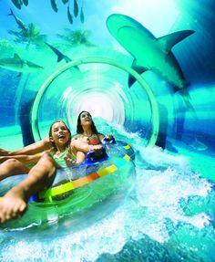 Atlantis Bahamas Resort, Paradise Island, Serpent Water Slide through the shark tank. Possible anniversary destination. Atlantis Bahamas, Nassau Bahamas, Atlantis Island, Bahamas Beach, Dream Vacations, Vacation Spots, Beach Vacations, Family Vacations, Romantic Vacations