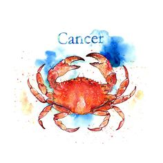 Cancer the Crab ★