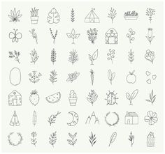 Hand drawn nature & plants doodles by Crocus Paperi on @creativemarket