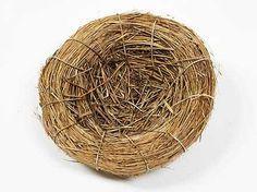 "5"" natural bird nest #birthday2013 #woodland"