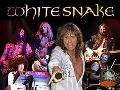 Whitesnake is probably one of my favotite Glam Rock band as much as Scorpions. 80s Glam Rock, Glam Rock Bands, Best Rock Bands, 80s Heavy Metal, Heavy Rock, Heavy Metal Bands, Classic Rock Artists, El Rock And Roll, David Coverdale