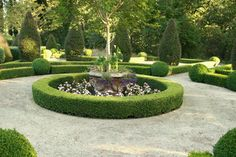 lanscape boxwoods | Boxwood Landscaping Design Ideas, Pictures, Remodel, and Decor