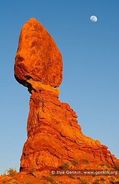 Moon Rising Over The Balanced Rock, Arches National Park, Utah, USA  More images: Arches National Park, Utah, USA Stock Images   Desert and Outback Landscape Stock Images   Landscape Stock Photography  To receive latest updates simply follow me on Tw national park usa