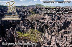 """Parque Nacional Tsingy, Un bosque de piedras: los """"tsingis"""" son mesetas cársticas en las que las aguas subterráneas han socavado las tierras altas elevadas y han creado cavernas y fisuras en la piedra caliza"""". Estas formaciones geológicas espectaculares son parte de un parque nacional de Madagascar y ocupan una superficie de más de 700 kilómetros cuadrados de ancho. Ni se te ocurra perdértelo si estás por la zona."""