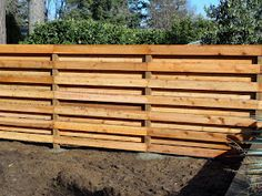 danger garden: My favorite thing in the garden this week, well, it's our new fence…