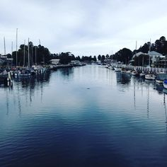Port Fairy #riverwalk #moyneriver #summer #holidays #portfairy by ericajane16