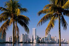 Deal Viaggio-Florida on the road: 14 giorni fly, volo, auto, 2 notti a Miami Miami Beach, Miami Florida, South Florida, Seattle Skyline, New York Skyline, Miami Pictures, Beach Holiday, Amazing Destinations, Vacation Destinations