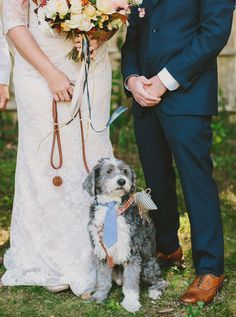 A sweet poodle mix at this couple's wedding! We love when couples have their dog in their wedding.
