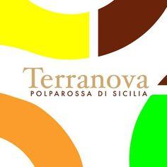 Logo Aziendale - Agrumeto - Terranova Arance Siciliane Impresa Agricola Leonardo Natalina - Palagonia - Catania - Sicilia