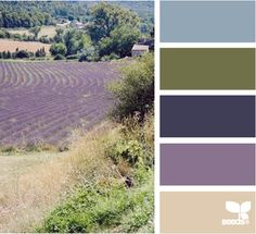 Not exactly the color palette I'm going for, but close?  These lavendar fields are just like the ones we have here! :-)