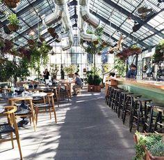 Interiores verdes: cafés e restaurantes decorados com plantas – Mercadinho Design