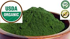 Pure Organic Wheatgrass JUICE Powder  Grown in the USA  No fillers 1 oz bag * BEST VALUE BUY on Amazon