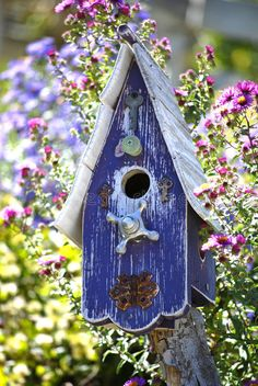 Download Bird House stock image. Image of chip, house, paint, garden - 6532759