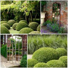 Summer Gardens ...