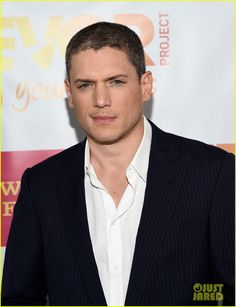 Wentworth Miller hits the red carpet at the 2014 TrevorLIVE LA annual event for The Trevor Project held at the Hollywood Palladium on Sunday (December 7)