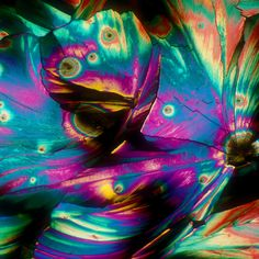 Alcohol under a microscope : Pina Colada