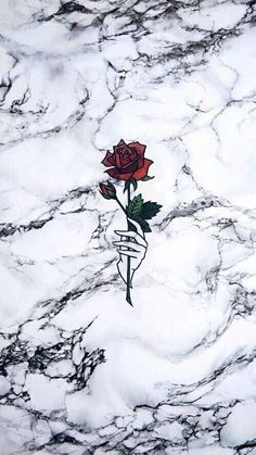 Uploaded by Ailyn Diaz. Find images and videos about marble, wallpaper and white… Uploaded by Ailyn Diaz. Find images and videos about marble, wallpaper and [. Wallpaper World, Wallpaper For Your Phone, Cute Wallpaper Backgrounds, Wallpaper Iphone Cute, Aesthetic Iphone Wallpaper, Flower Wallpaper, Lock Screen Wallpaper, Wallpaper Quotes, Aesthetic Wallpapers