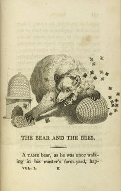 The bear and bees, Fables, Ancient and Modern: Adapted for the use of children, Edward Baldwin, 1807.