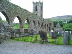 Baltinglass Abbey, Co. Wicklow