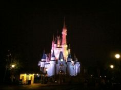 Tips for First Time Visitors to Disney World