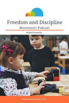 freedom and discipline montessori