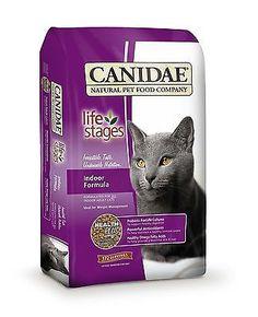 Dry Dog Food Kitten