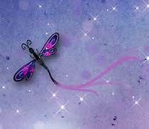 Backgrounds of Dragonflies - Bing images