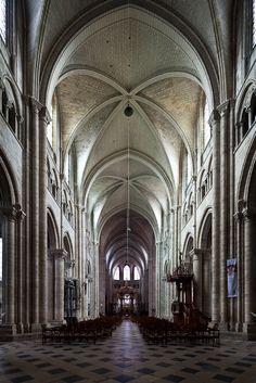 The Metropolitan and his Cathedral – Saint-Étienne de Sens  (Dennis Aubrey)   Via Lucis Photography