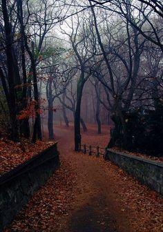 autumnal inspo
