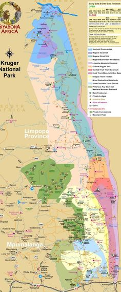 kruger itineraries and lodges Kruger National Park, National Parks, Travel Maps, African Safari, Cool Places To Visit, South Africa, Travel Inspiration, Tourism, Wanderlust