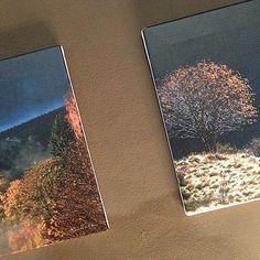 mostra fotografica pino veclani