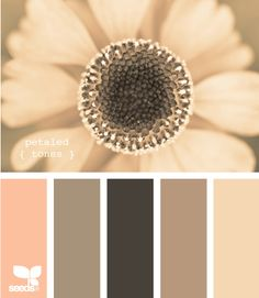 all kinds of color palette ideas for our new place! love these colors for the living room or bedroom- petaled tones all kinds of color palette ideas for our new… Colour Schemes, Color Combos, Colour Palettes, Pantone, Design Seeds, Colour Board, Deco Design, Color Swatches, Color Pallets