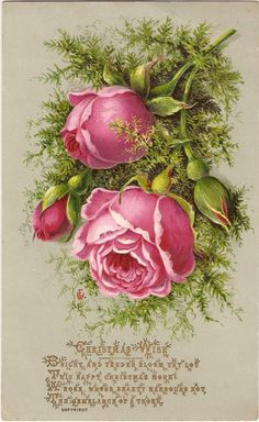 Vintage Flower Art Paintings Pink Roses Ideas For 2019 Decoupage Vintage, Art Vintage, Vintage Flowers, Vintage Images, Vintage Prints, Vintage Floral, Christmas Gift Tags, Vintage Christmas Cards, Christmas Rose