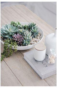Succulent Table Decor, Succulent Bowls, Succulent Gardening, Succulent Arrangements, Succulent Terrarium, Succulents Garden, Plant Decor, Flowers Garden, Planting Flowers