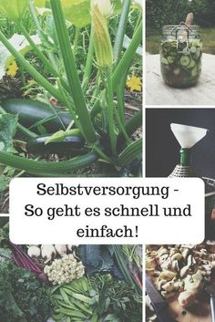 Selbstversorgung muss nicht viel Zeit in Anspruch nehmen. In diesen Artikel erfährst du, wie man sich die Gartenarbeit leicht macht. #Permakultu