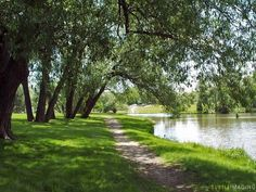 A summer stroll along Fairy Lake in Newmarket, Ontario