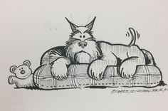 How to draw Cartoon Dog, Cartoon Drawings, Animal Drawings, Pretty Animals, Cute Animals, Schnauzer Puppy, Schnauzers, Miniature Schnauzer, Animal Doodles