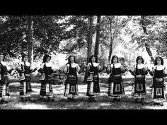 Ας κρατήσουν οι χοροί, Διονύσης Σαββόπουλος
