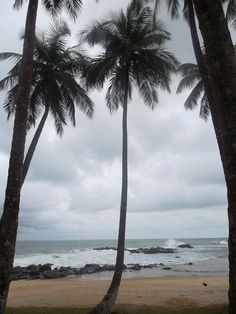 Liberia has fairly tropical weather. Liberia is mostly hot and humid and sometimes gets extreme amounts of rainfall. This is an image of another beach in Liberia.