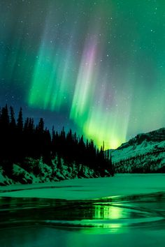 A beautiful picture of an Aurora in Alaska. This picture of the Night Sky would make a great iPhone Wallpaper. Beautiful Sky, Beautiful Lights, Beautiful Landscapes, Landscape Photography, Nature Photography, Landscape Photos, Night Photography, Scenic Photography, Photography Tips
