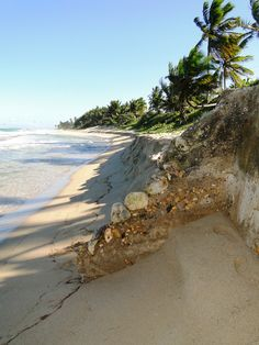 My daughter & I walked this Beach in Cabarete, Puerto Plata, DOMINICAN REPUBLIC after a long day providing free medical care in a poor area of the city