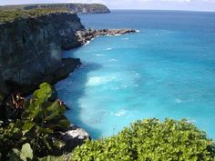 Guadeloupe, French West Indies, and home to Jacques Cousteau Underwater Reserve.