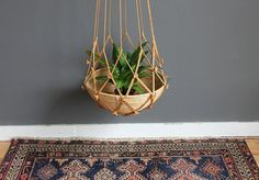Chunky Knotted Jute Plant Hanger