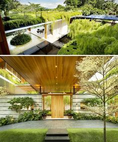 Singapore Willow House... Outdoor lounge spaces look out onto islands of ferns in the water, cascades of vines, water fountains, and of course, several willow trees. The wood beams supporting the cantilevered roof mimic the shape of tree branches, and the roof itself is covered in lush greenery.