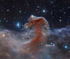 "Hubble image of the Horsehead Nebula, ""tilt-shifted"" by Imgur user ScienceLlama (Original image credit: NASA, ESA, and the Hubble Heritage T..."