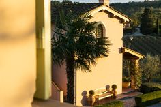 Poggio al Casone, Tuscany. Ten charming apartments restored in Tuscan style in an elegant house on a 40 hectare organic vineyard in the hills of the Pisa area http://www.organicholidays.com/at/3292.htm